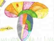 Boletus rainbolis