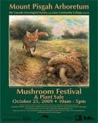festival-poster-2009