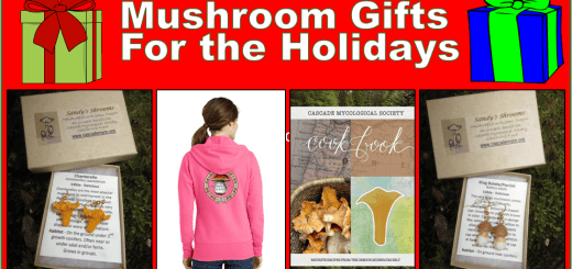 holiday-mushroom-gifts