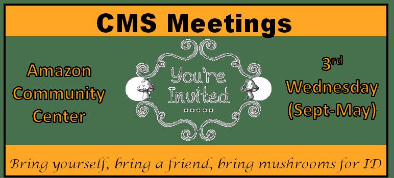 CMS Meetings