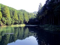 """Ten'ō-ike (天王池), or the """"pond of the heavenly king"""" greeted us at the beginning of the hiking trail."""