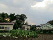 The sun begins to set over Tokorozawa