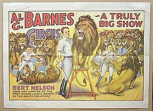 Barnum & Bailey advertisement from the 1920's showing a lion in the center with a cicrus unfolding around him.