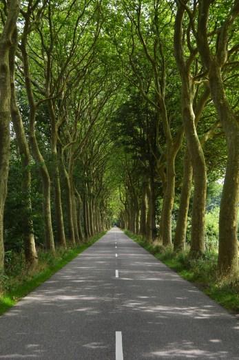 Tunelul Vietii, Olanda