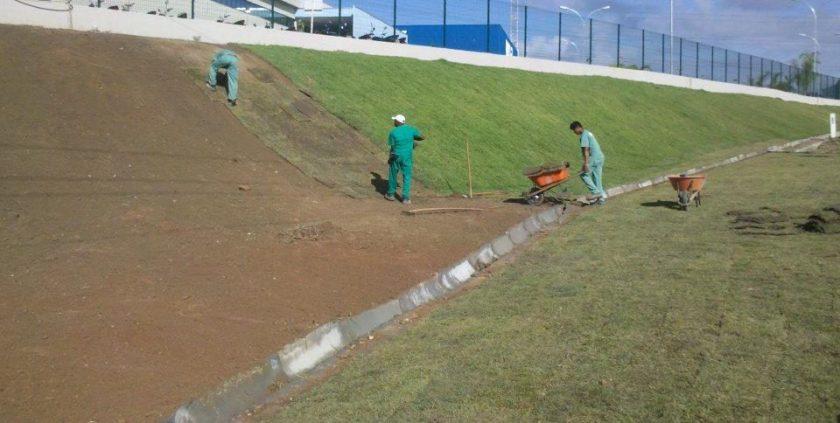 Qual a importância da grama esmeralda no projeto paisagístico? - Cascalheira Garden - Jardinagem e Paisagismo Camaçari