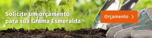 orcamento-grama - Cascalheira Garden - Jardinagem e Paisagismo Camaçari