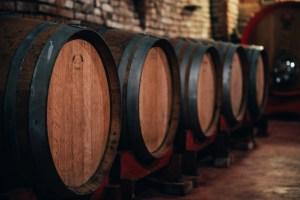 Degustazione vini e prodotti nelle langhe botti