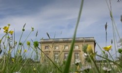 Wildflowers adorn lawn of Petit Trianon