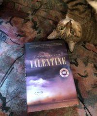 Valentine Bookcover