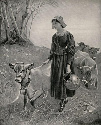 Evangeline tending the cattle