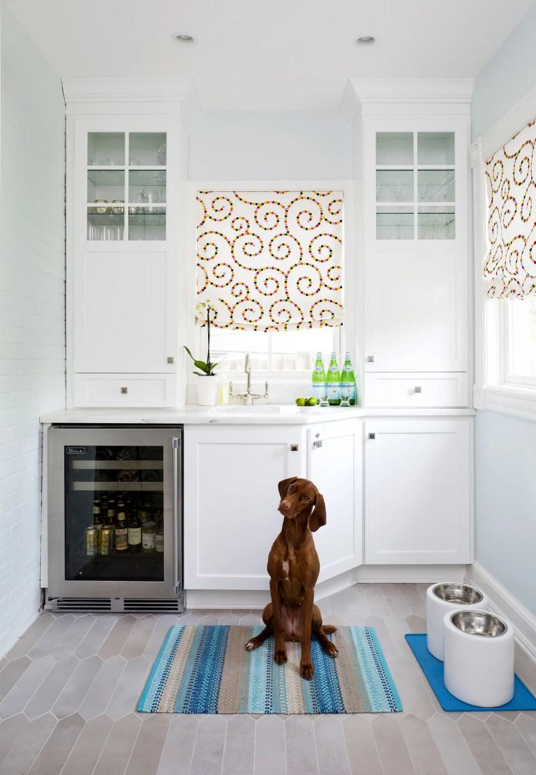 Dog with wine fridge