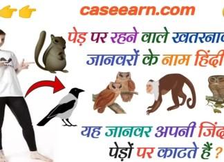 कौन कौन से ऐसे जानवर है जो कि पेड़ों पर रहते हैं। lion tail मक्के। pedon per rahane wale pakshiyon ke naam
