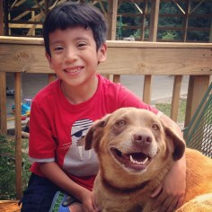Get this boy a dog dad!