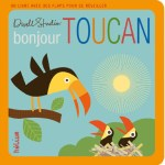 Bonjour Toucan
