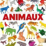 Animaux – de Maria Jalibert (Didier jeunesse)
