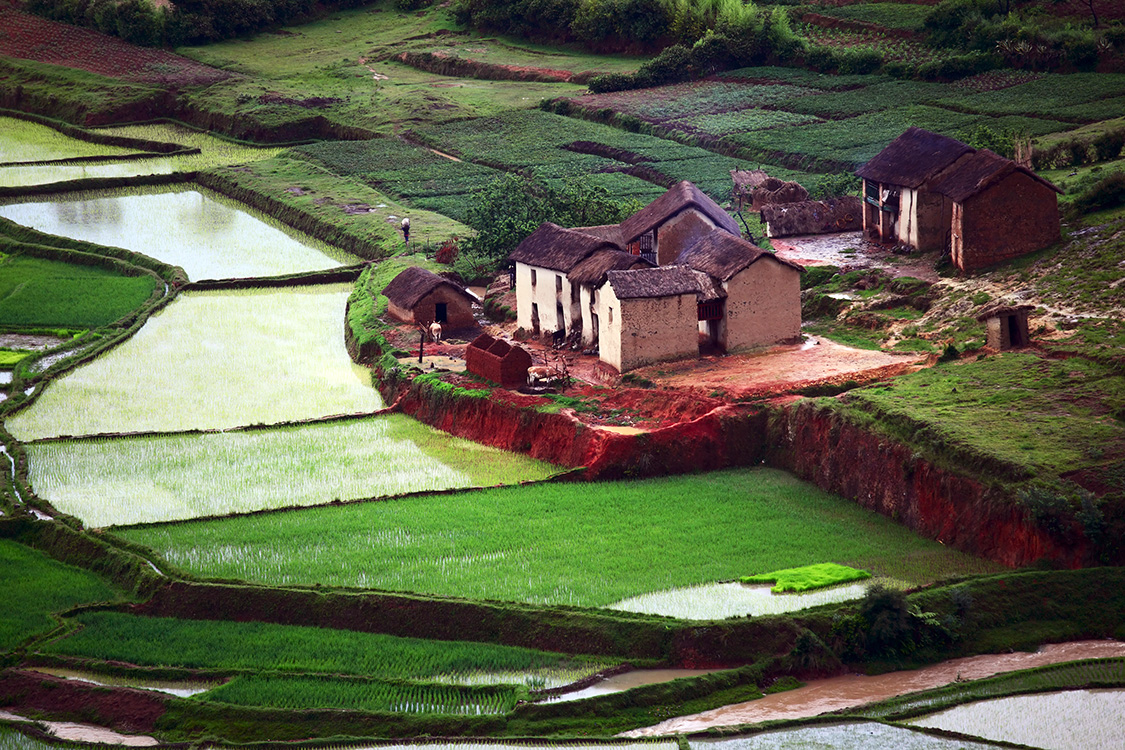 Terraced rice fields, Madagascar, Countries for Kids, CASE OF ADVENTURE