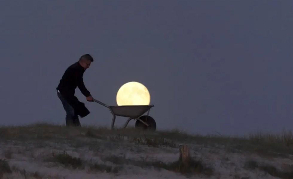 Gradinarit sub clar de luna eficient