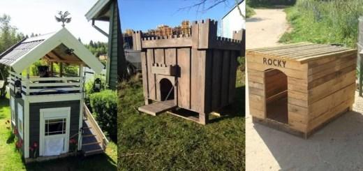 Construirea unei custi de caine din paleti de lemn