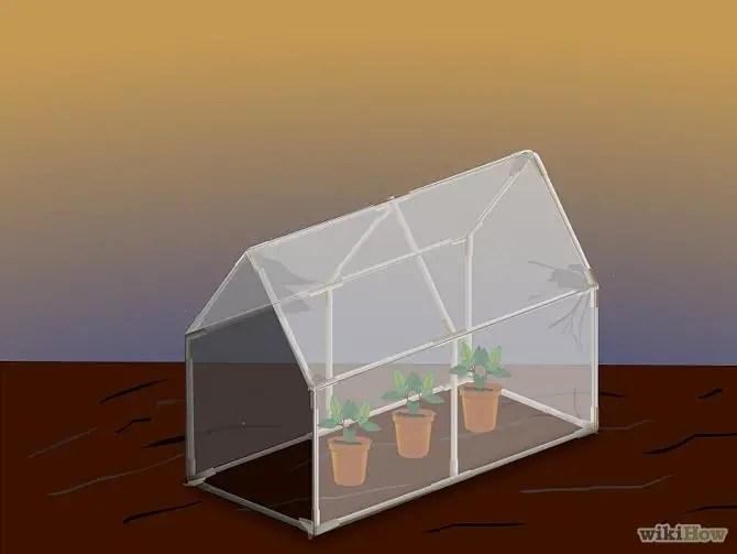 construirea unei minisere How to build a mini greenhouse 5
