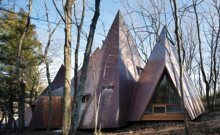Casa-cort din Japonia