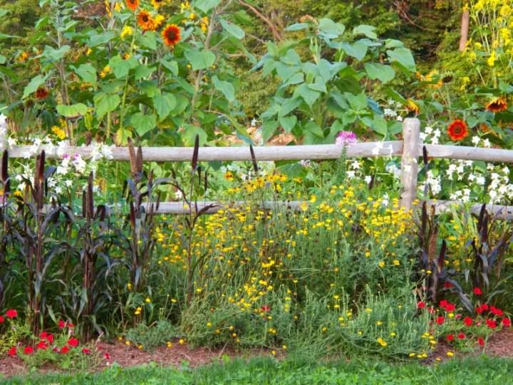 gardulete din lemn pentru gradina Garden fencing ideas 7