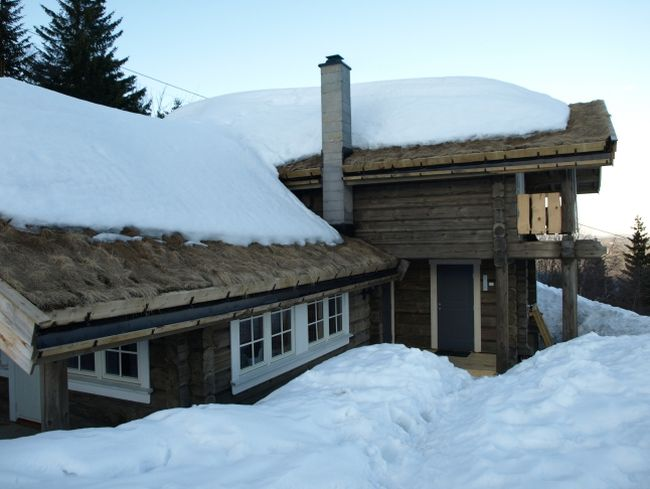 Case norvegiene din lemn frumoase