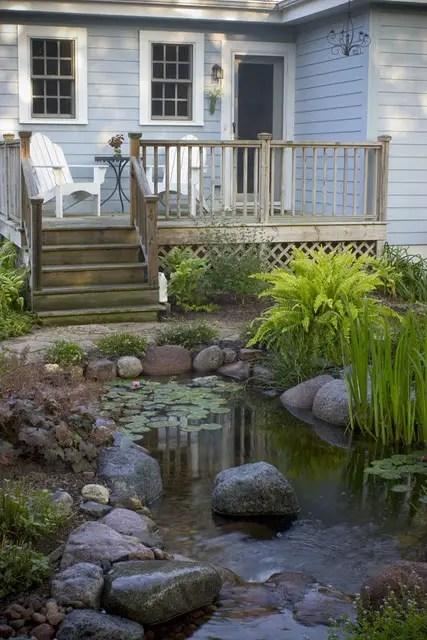 iazuri de gradina Garden pond design ideas 10