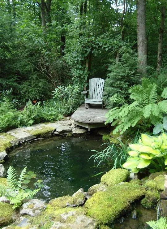 iazuri de gradina Garden pond design ideas 9