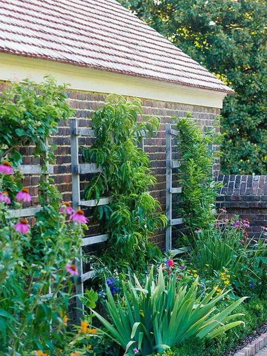 modele de gradini mici amenajate cu flori Small flower garden landscaping ideas 8