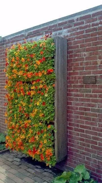 Idei pentru amenajarea unei gradini de 50 de metri patrati 50 square meter garden design ideas 7