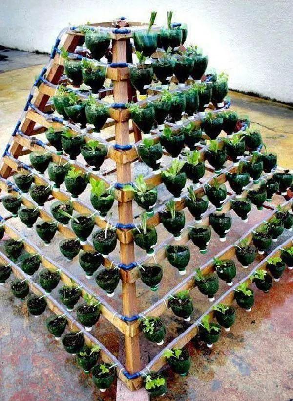 gradini verticale din peturi Plastic bottle vertical garden ideas 9