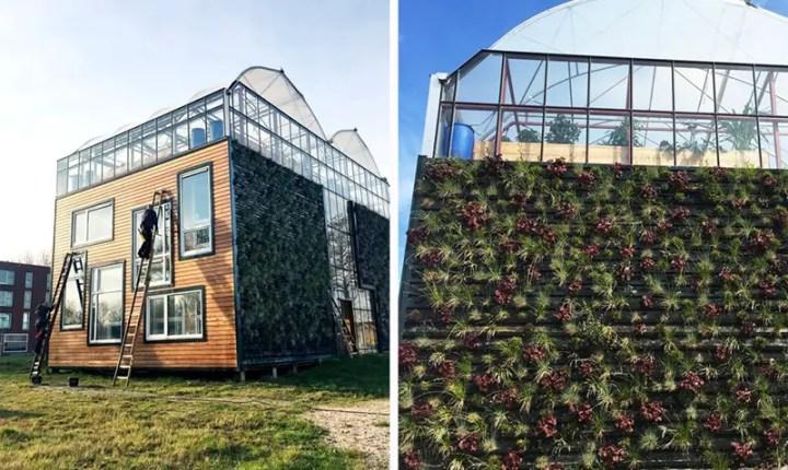 casa-sera din rotterdam greenhouse residence in rotterdam 4