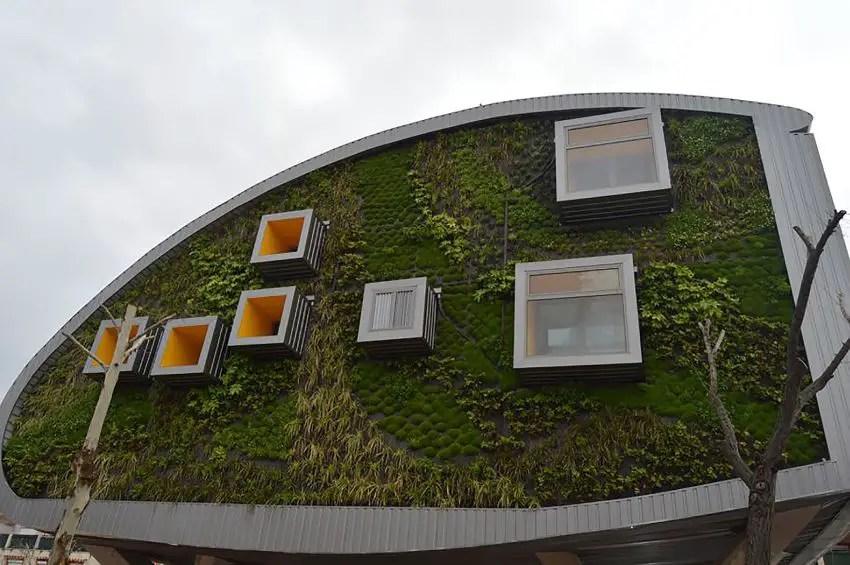 Casa viitorului - fatade organice