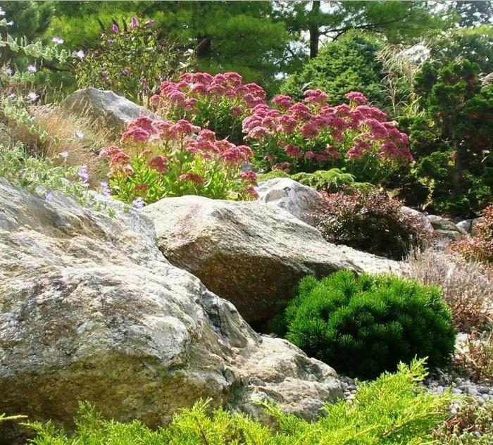 gradini amenajate ca la munte Mountain garden landscaping ideas 8