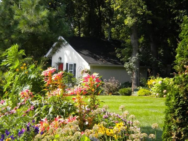gradini amenajate cu gazon si flori Flower and lawn landscaping ideas 8