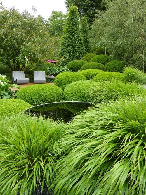 gradini amenajate cu conifere evergreen landscaping ideas 7