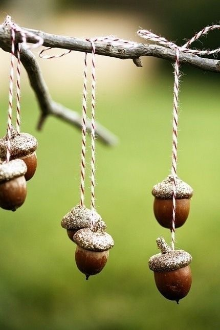 decoratiuni din ghinde si castane Acord and chestnut crafts 19
