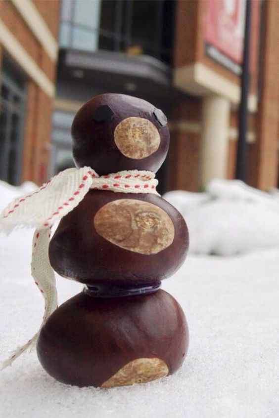decoratiuni din ghinde si castane Acord and chestnut crafts 5