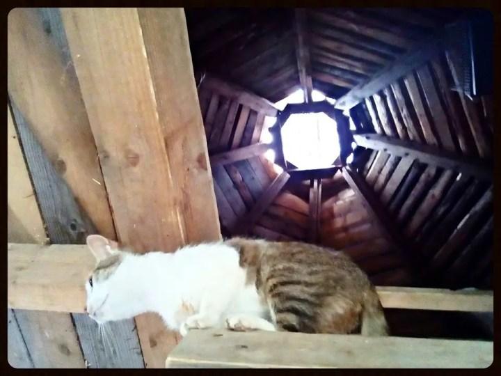 Luminatorul aduce casei lumina natura si o atmosfera aparte. Foto: pagina de Facebook Gospodaria Noastra