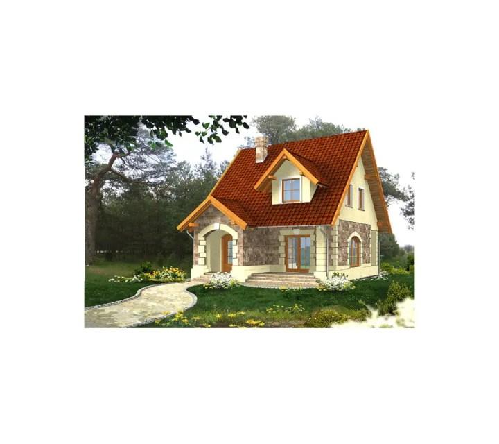 proiecte de case in doua culori 2