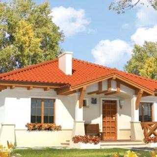 case cu parter in stil traditional