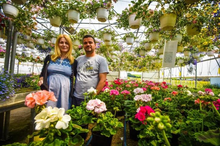 afaceri de succes cu flori