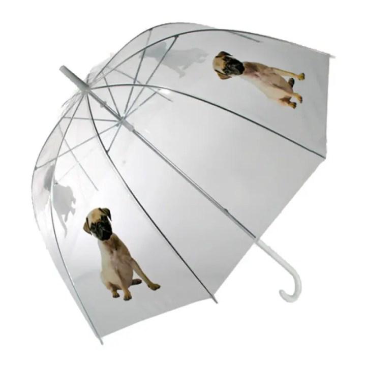 umbrela 4