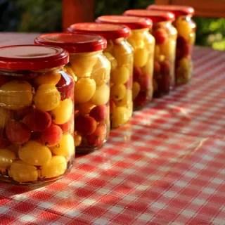 afaceri la tara cu compot de fructe