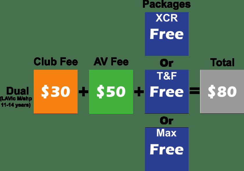 dual fees Graphics