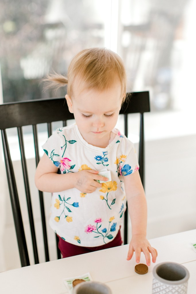 Mini Garden Toddler Activity | Cassandra Shiree Photography | Motherhood Blog