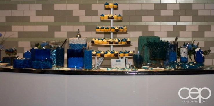 The dessert spread at the 2013 Ford Blue Party