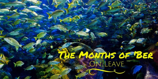The Months of 'Ber — On Leave (Banner)