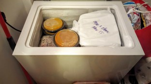 The Week That Was... November 8th - 14th, 2015 — A Packed Chest Freezer at Casa de Palmer