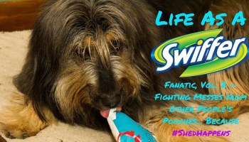 Life as a Swiffer Fanatic, Vol. 2 — Fighting Messes from Other People's Pooches... Because #ShedHappens (Featured Image)